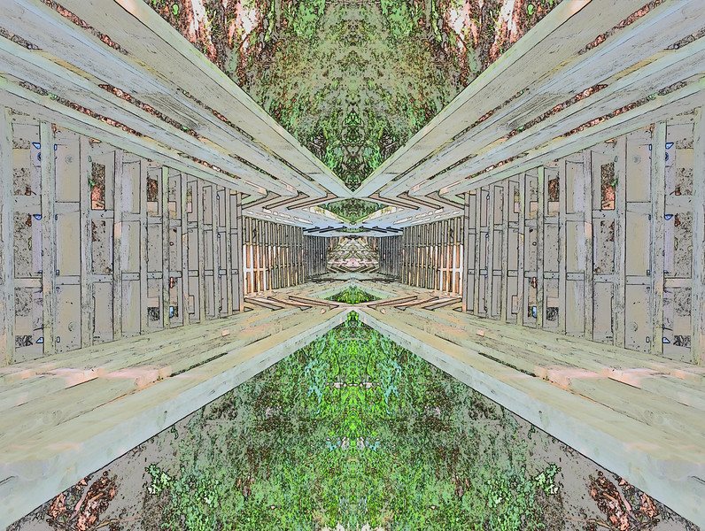 DSC_0231.Mirror1.jpg