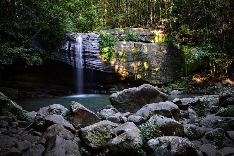 Buderim Forest Park, Australia