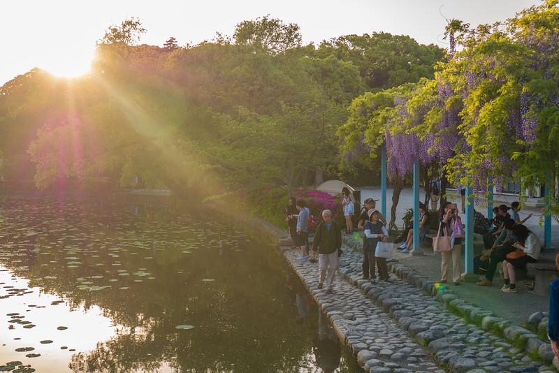 Kamakura-90.jpg