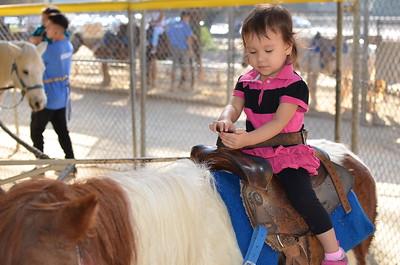 2017_11_26 Pony Ride