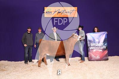 Northwest District Livestock Show