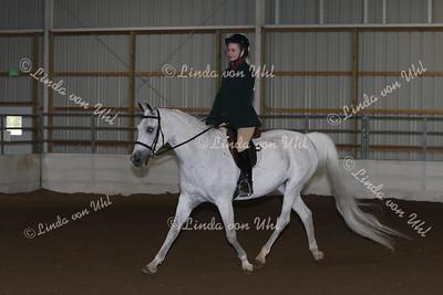 Class #126 Arabian SHUS Hunter Type Open