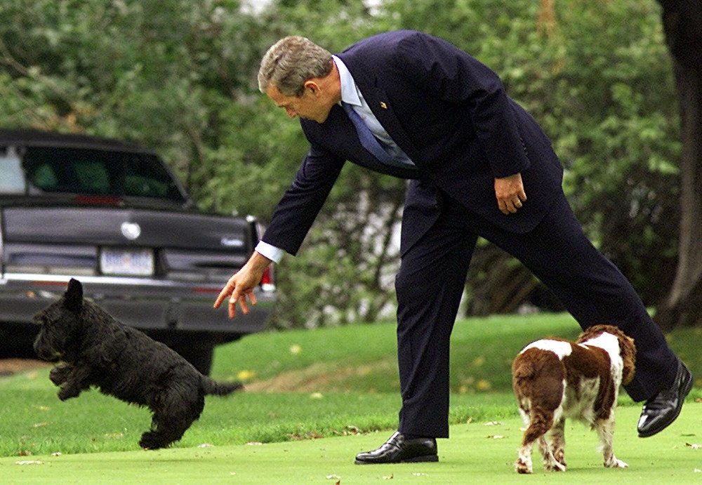 . President Bush plays with his dogs Barney, left and Spot, on the South Grounds of the White House prior to leaving for the Central Intelligence Agency, Wednesday, Sept. 26, 2001. (AP Photo/Doug Mills)