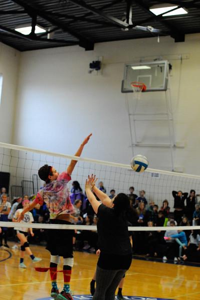 653February 05, 2016_OLF_Volleyball_CrazyHair_Cath_S_Wk.jpg