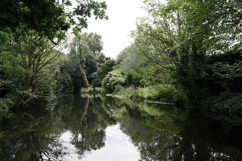River Wandle - Morden Hall Park