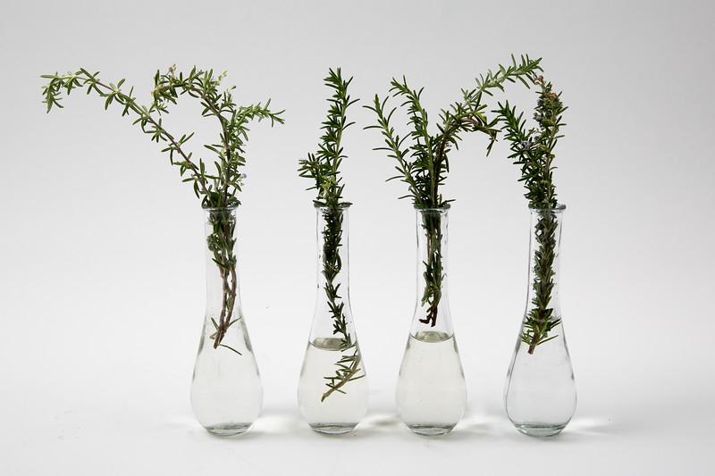 Vases-3015.jpg