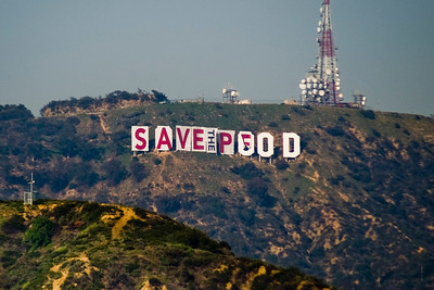 903 Hollywood Sign Change