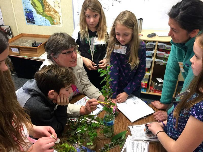Vineyard School Oak Ambassador Training