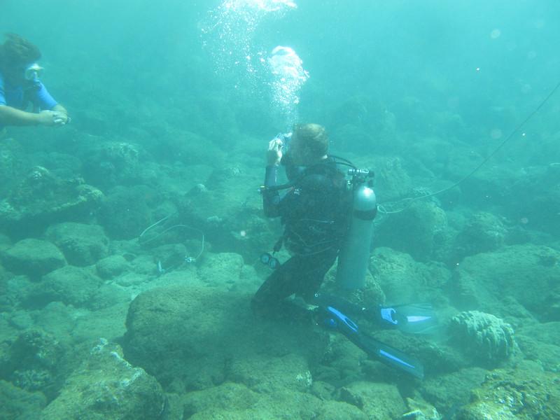 Hawaii diving - 009-2.jpg