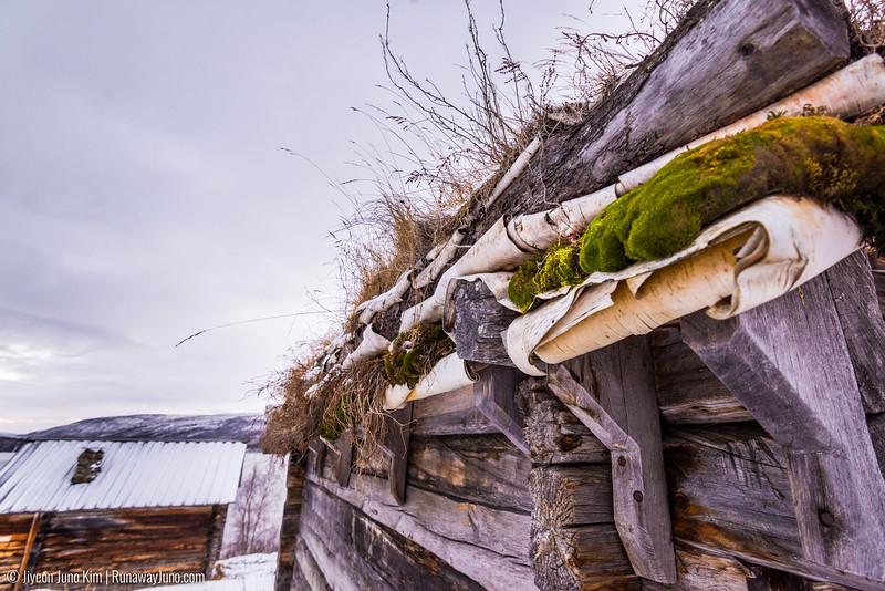 Nov.12_Utsjoki-6106194.jpg