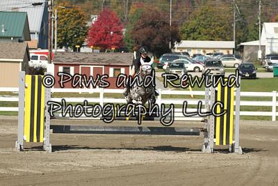Ring I: Pony Jumper