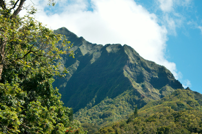Oahu's Landscape