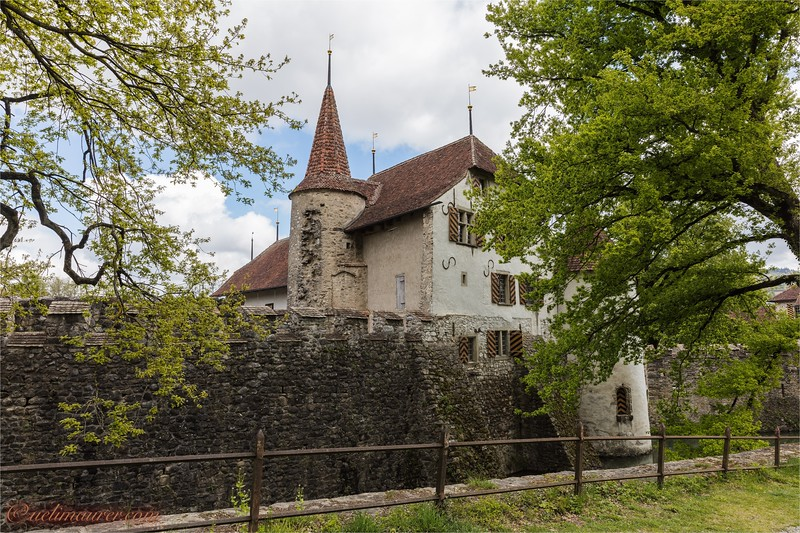 2017-05-03 Schloesser Aargau - 0U5A5630.jpg