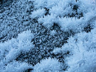 Landskap-vinter