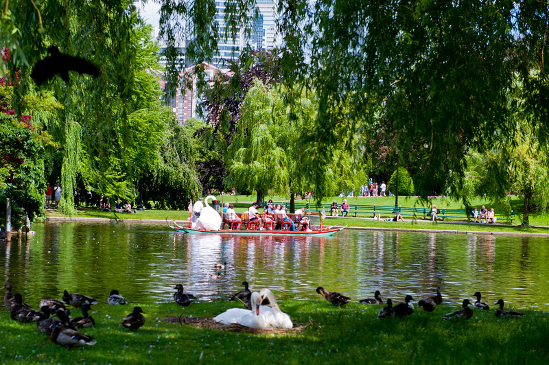 Boston-9223.jpg