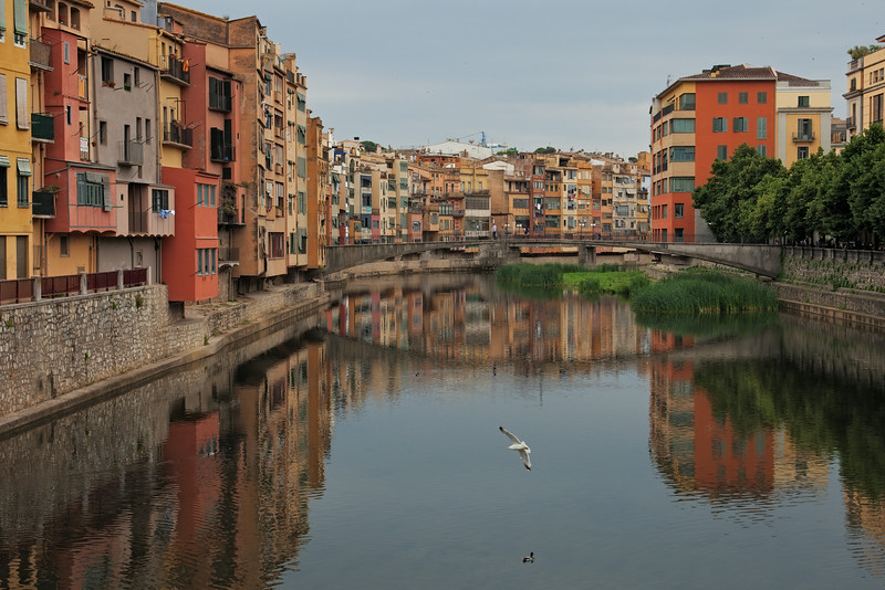 Girona,  C/Y  (Zeiss)35-70 at 35mm