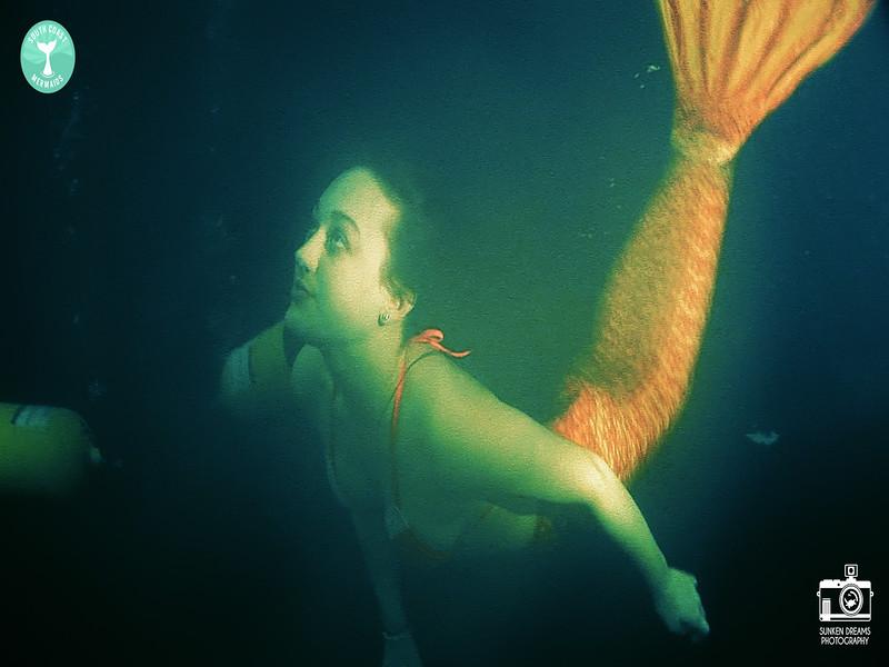 Mermaid Re Sequence.01_20_25_17.Still006.jpg