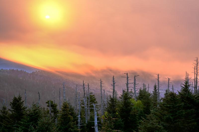 Smoky Mountains 95