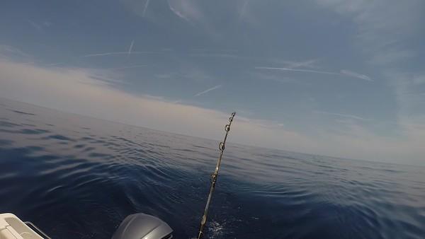 Offshore Fishing 2018