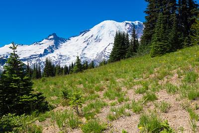 2017 Mt Rainier