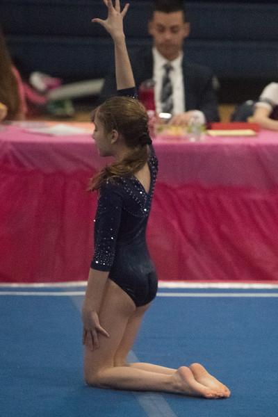 Gymnastics at Hanover