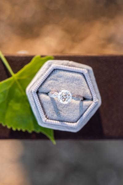 20190524-engagement-99.JPG
