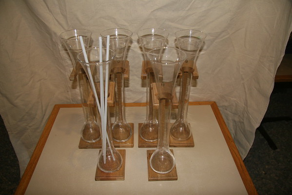 Tall Party Glasses w/Wooden Stand & Straws