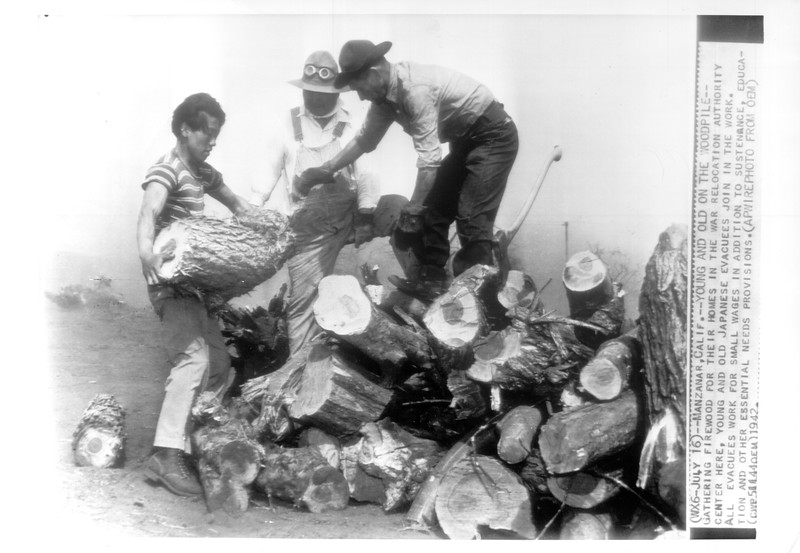 """""""Young And Old On The Woodpile"""" -- caption on photograph"""