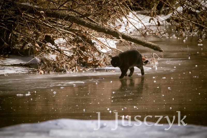 Jusczyk2021-2902.jpg