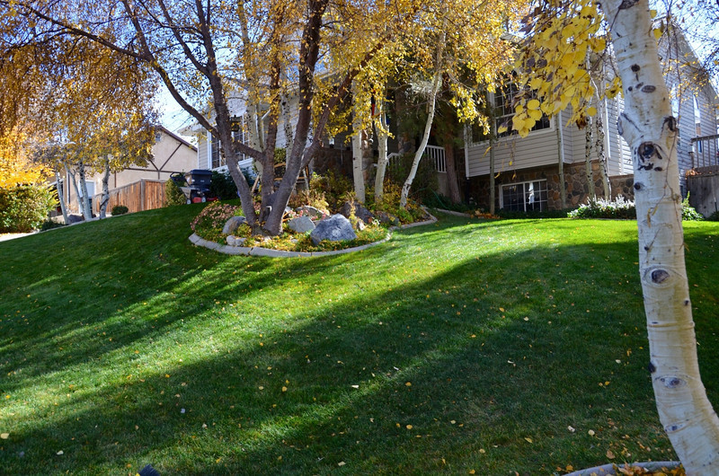 2012-11-3 ––– This was a Saturday after raking and mowing leaves. The front lawn was covered in yellow leaves so heavily you couldn't see just how green the grass still was. It was a ton of work, but a beautiful day.