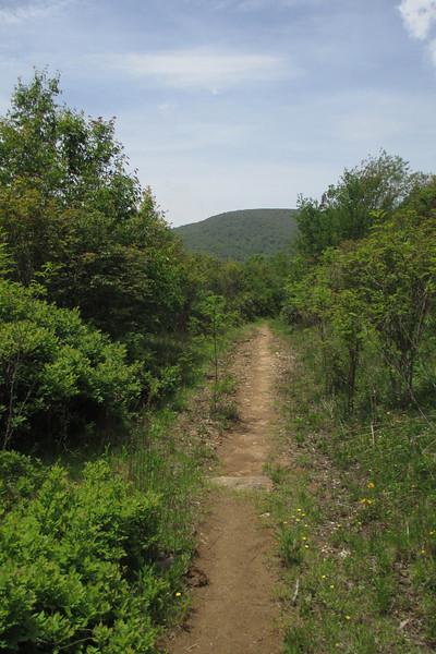Graveyard Ridge Trail (5,500')