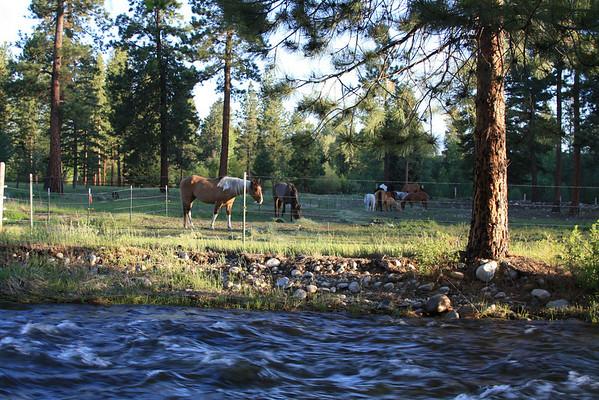 Chief Joseph Ranch Spring 2009
