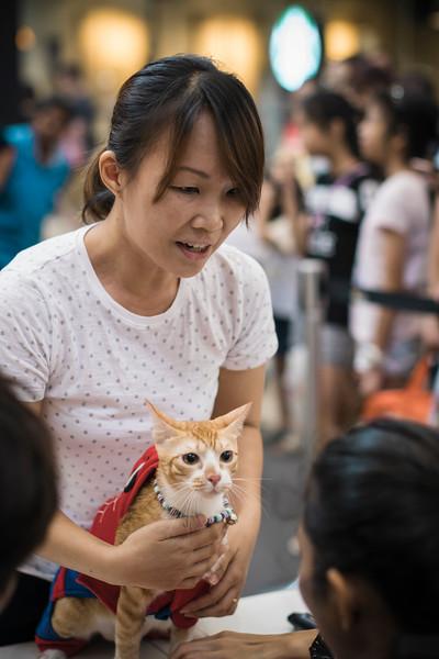 VividSnaps-The-Seletar-Mall-CAT-Dress-Up-Contest-210.jpg