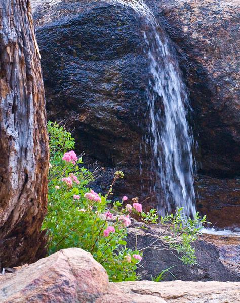 Shirley Creek-3.jpg