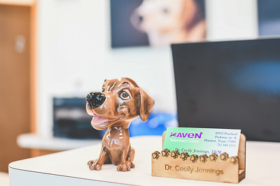 Dr. Jennings | Haven Veterinarian Clinic