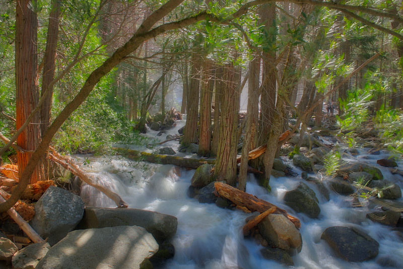 Misty Bridal Veil Creek_DSC5294_HDR.jpg