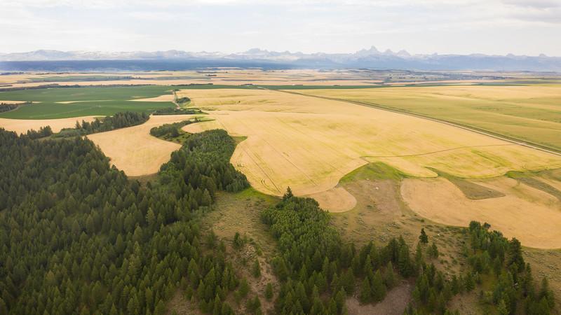 Felt, Idaho Property