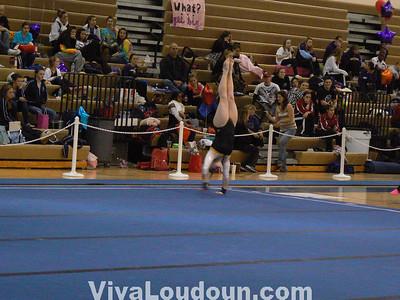 Gymnastics: VHSL State Meet 2011