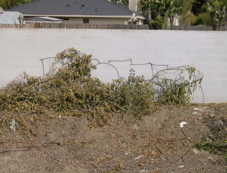 Images from Graffiti Wipeout project as part of Serve Visalia Day - Clean up the Santa Fe corridor in North Visalia.