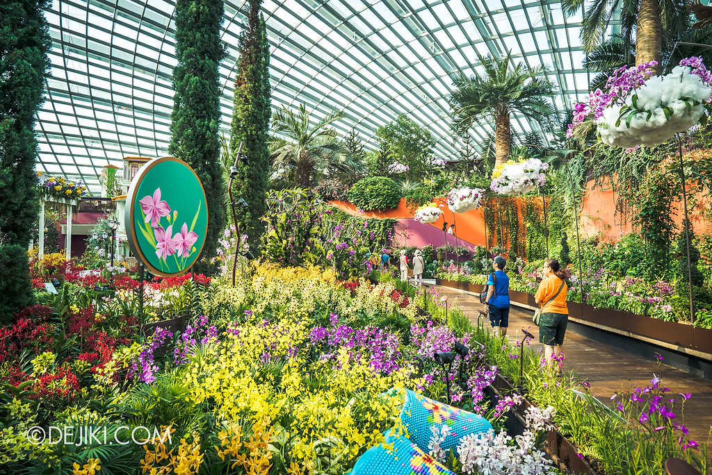 Gardens by the Bay - Orchid Extravaganza 2018 / Flower Field Back Path 1