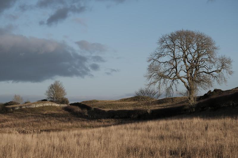 SELKIRK, SCOTLAND - January 08:       (Photo by Rob Gray / Freelance)
