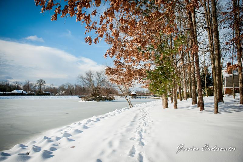 VA_Snow_ART_JOP-0099.jpg