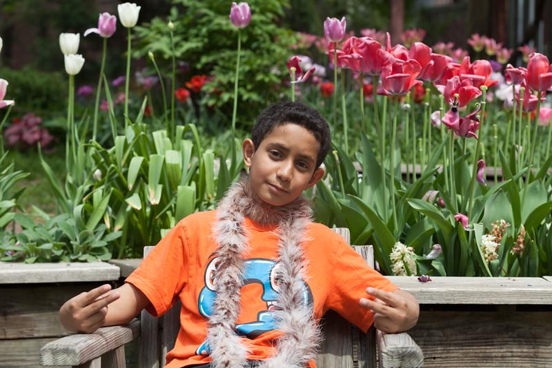 Tulip Garden Favorite may2015-7151.jpg