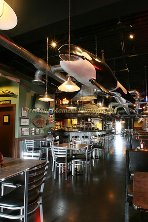 Whales Raw Bar Interior Pictures