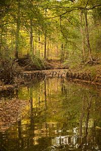 Banita Creek105