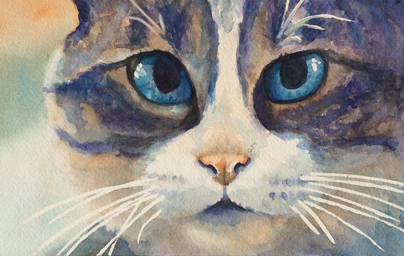 A class project...I drew my color palette out of a hat: Split complementary on orange (Orange, blue violet, and blue green) and was only allowed to use those three colors.  This is my cat, Pandy.  Eighth sheet of Arches 140# cold press.