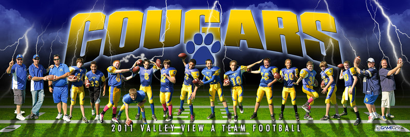 Valley View Cougars