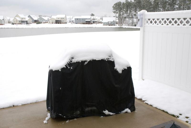 SnowFeb13-7.jpg