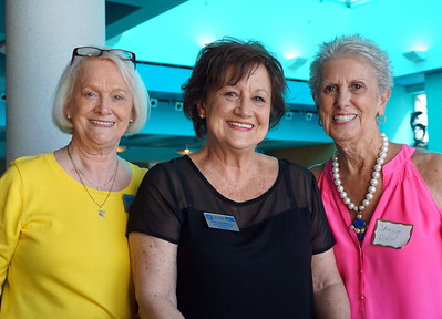 2019 Spring SOS~ ACSC Icon Reception Thursday, 5/2 and some afternoon Fun by Vickie Harrison