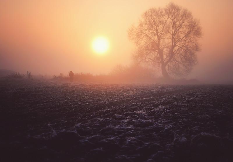 agnieszka fog wlodawa LRG.jpg